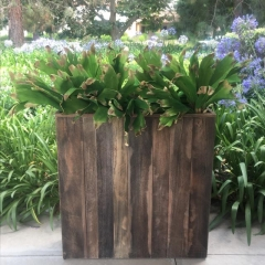 Rental store for PLANTER, RUSTIC WOOD 36 in Camarillo CA